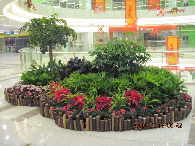 室外植物花卉设计