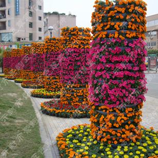 景观 墙 植物