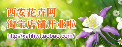 西安花卉网淘宝店铺