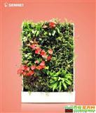 瑶草琪花 移动智能植物墙 室内花卉绿植盆栽 美观净化空气
