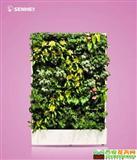 两情相悦 移动智能植物墙