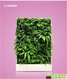 欣欣向荣 移动智能植物墙 室内花卉绿植盆栽 美观净化空气