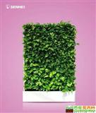 森罗万象 移动智能植物墙 室内花卉绿植盆栽 美观净化空气